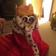 2nd King Bob